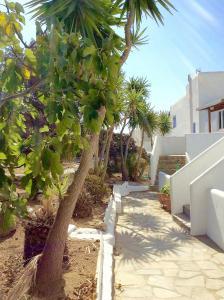 Manos Studios, Apartments  Platis Yialos Mykonos - big - 53