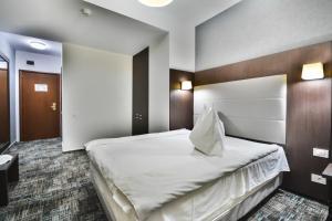 Hotel Europeca, Hotely  Craiova - big - 10