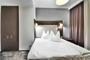 Hotel Europeca, Hotely  Craiova - big - 8