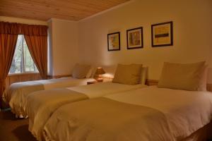 Cabaña Central Estandar -  4 pers.
