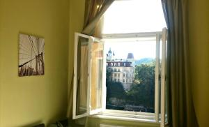 Apartment Fairy Tale, Appartamenti  Karlovy Vary - big - 22