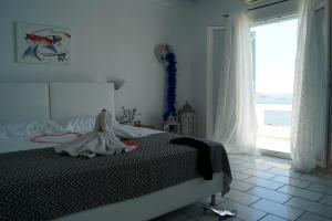 Amazing View Hotel Apartments(Agios Stefanos)