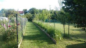 Farm stay Lackovic, Farmy  Bilje - big - 34