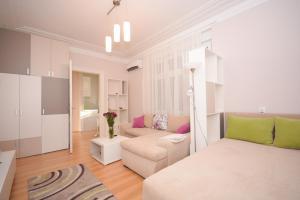 Apartment Mina, Appartamenti  Belgrado - big - 15