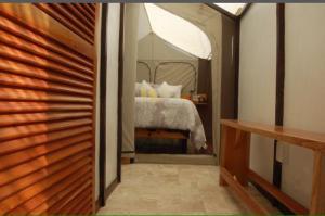Rhincodon Typus, Hotels  Holbox Island - big - 38