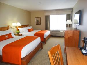 Quality Inn & Suites Amsterdam