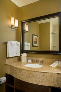 Hilton Garden Inn Phoenix Airport North, Hotels  Phoenix - big - 12