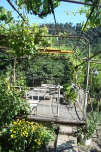 Guesthouse Valeria, Ostelli  Borjomi - big - 8