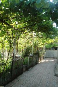 Guesthouse Valeria, Ostelli  Borjomi - big - 7