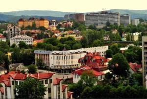 Apartments in the center, Apartmanok  Truszkavec - big - 24