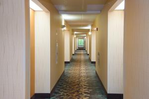 Pigeon River Inn, Hotels  Pigeon Forge - big - 34