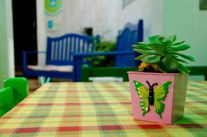 Hostal Los Aventureros, Hostely  Santa Cruz de la Sierra - big - 31