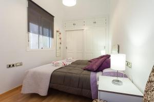 Casa C4R Alegría de Cádiz, Appartamenti  Cadice - big - 23