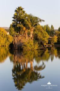 Parque dos Monges, Zelt-Lodges  Alcobaça - big - 20