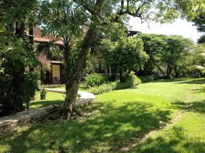 Casa Armonia, Appartamenti  Playa del Carmen - big - 43