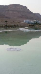 Rose Dead Sea Neve Zohar, Penzióny  Neve Zohar - big - 80
