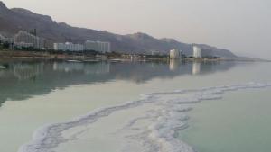 Rose Dead Sea Neve Zohar, Penzióny  Neve Zohar - big - 78