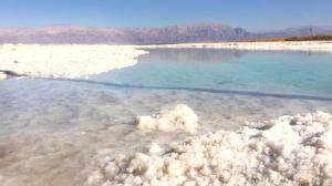 Rose Dead Sea Neve Zohar, Penzióny  Neve Zohar - big - 81