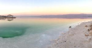 Rose Dead Sea Neve Zohar, Penzióny  Neve Zohar - big - 83
