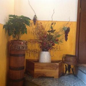 Agriturismo Barcola - AbcAlberghi.com