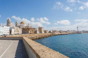 Casa ALEGRIA de Cadiz, Ferienwohnungen  Cádiz - big - 15