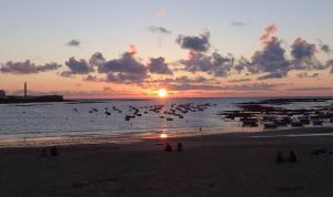 Casa ALEGRIA de Cadiz, Ferienwohnungen  Cádiz - big - 12