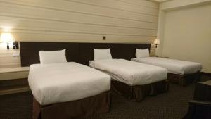 Dreamer Hotel, Hotely  Budai - big - 33