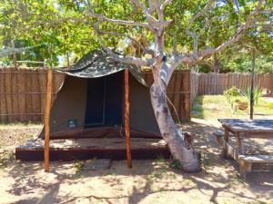 Mozambeat Motel, Hostels  Praia do Tofo - big - 14