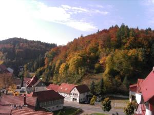 Hotel-Pension Waldhaus, Pensionen  Bad Grund - big - 24