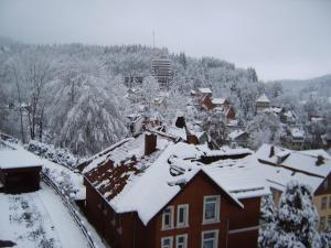 Hotel-Pension Waldhaus, Pensionen  Bad Grund - big - 22