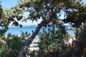 Ktima Grammeno Beachside Villa, Ville  Kountoura Selino - big - 27