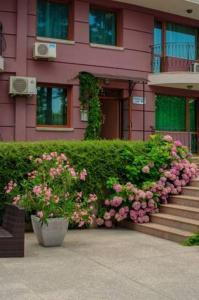Apartment Purpurna Zvezda
