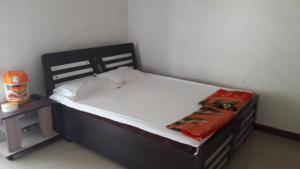 Nitinbhai Home Stay, Priváty  Sasan Gir - big - 1