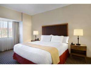 Embassy Suites Detroit Metro Airport, Hotels  Romulus - big - 6