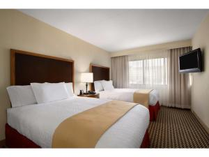 Embassy Suites Detroit Metro Airport, Hotels  Romulus - big - 9