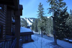 The Pines #180, Apartmány  Whitefish - big - 13