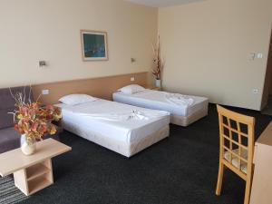 Kalofer Hotel, Hotely  Slunečné pobřeží - big - 24
