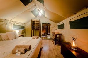 Luxury Tent - 2