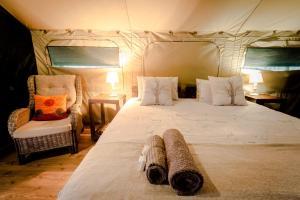 Luxury Tent - 1