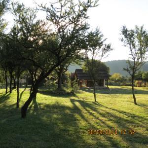 Cabañas Entre Verde