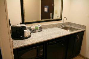 Hampton Inn & Suites Detroit/Airport Romulus, Szállodák  Romulus - big - 4