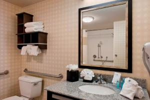 Hampton Inn & Suites Detroit/Airport Romulus, Szállodák  Romulus - big - 3
