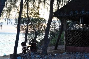 Dolphin View Lodge