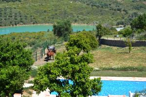 Finca Ranchiles, Apartmanok  Montecorto - big - 46