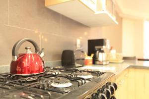 Smart Apartment in Condesa (Choapan St.), Appartamenti  Città del Messico - big - 7