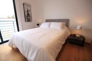 Smart Apartment in Condesa (Choapan St.), Appartamenti  Città del Messico - big - 9
