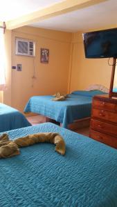 Hotel y Balneario Playa San Pablo, Отели  Monte Gordo - big - 40
