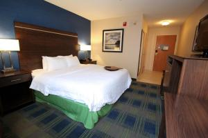Hampton Inn Sandusky-Central, Отели  Сандаски - big - 3