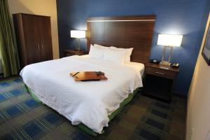 Hampton Inn Sandusky-Central, Отели  Сандаски - big - 12
