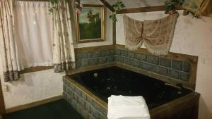 Castle Wood Theme Cottages- COUPLES ONLY, Hotels  Big Bear Lake - big - 20